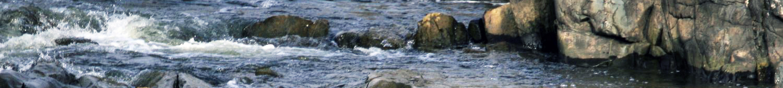 Controle de la qualite de l'eau pour la potabilisation