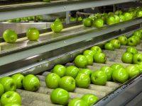 Controle de la qualite de l'eau dans les industries agro-alimentaires