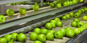 Food industry water treatment